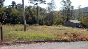 New Tazewell, TN 37825
