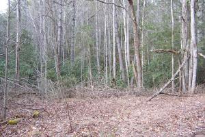 5 acre lot in Saddle Ridge