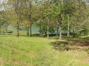 Willmore Drive, White Pine, TN 37890