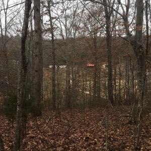 4712 Lewis Rd, Powell, TN 37849