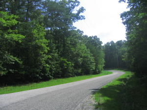 Bottom Drive, 2, Monterey, TN 38574