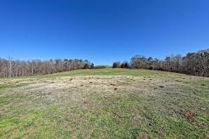 147 Frank Bend Lane, Rutledge, TN 37861