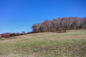 E Wolfe Valley Rd, Heiskell, TN 37754