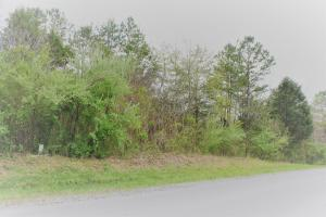 164 Amohi Way, Loudon, TN 37774