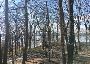 2881 Lake Forest Circle, Talbott, TN 37877