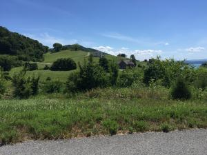 Lot 583 Russell Brothers Rd, Sharps Chapel, TN 37866