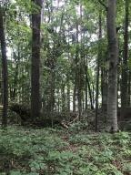 Lot 6 Rocky Top Rd, Lenoir City, TN 37772