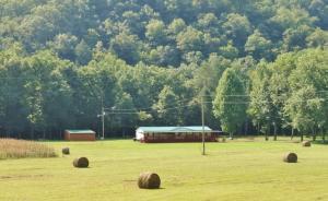 454 Spruce Pine Rd, Mooresburg, TN 37811
