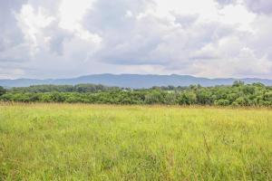 685 Winding Creek Way, Walland, TN 37886