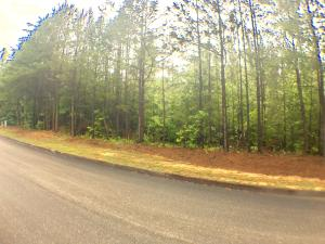 Osprey Way, Harriman, TN 37748