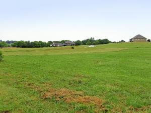 9625 Gunnies Drive, Kodak, TN 37764