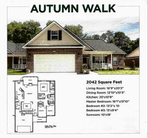 Autumn Walk, Knoxville, TN 37918