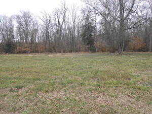 Beautiful level lot ready to build your dream home in a subdivision on Douglas Lake.