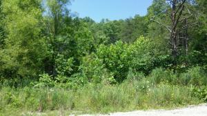 Cherry Lane, Caryville, TN 37714