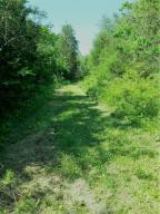Wolfenbarger Rd, Luttrell, TN 37779