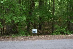 Lot 107 Treasure Tree Rd, Ten Mile, TN 37880
