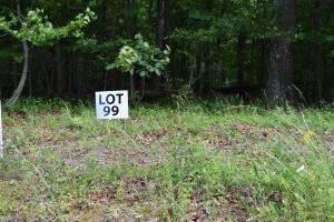 Lot 99 Halfmoon Shores Drive, Ten Mile, TN 37880