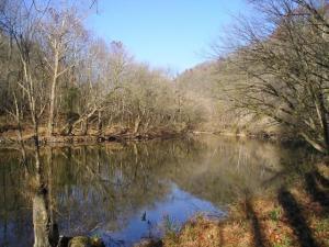 Powell River Rd, Harrogate, TN 37752