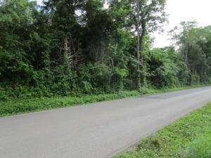 Rocky Springs Rd, Bean Station, TN 37708