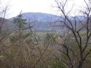 220 Fox Hollow Rd, Townsend, TN 37882