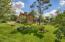 Massive backyard with lush greenery and professional landscaping