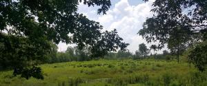 214 Muddy Branch Lane, Crossville, TN 38571