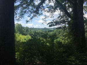 400 Miles Lane, Cumberland Gap, TN 37724