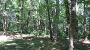 Frontier Circle Lot 16-A, Friendsville, TN 37737