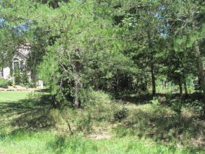 10 Brooks Lane, Fairfield Glade, TN 38558