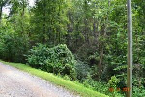 Bruce Ogle Way, Sevierville, TN 37862
