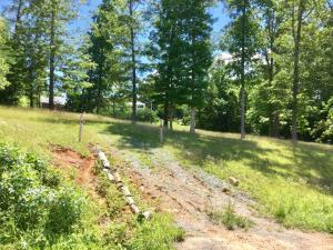 Mountain Rd, New Tazewell, TN 37825