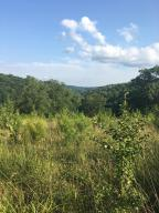 Chestnut Ridge Rd, Heiskell, TN 37754