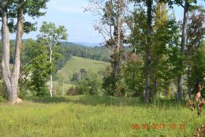 0 Carr Ridge Rd Rd, New Tazewell, TN 37825