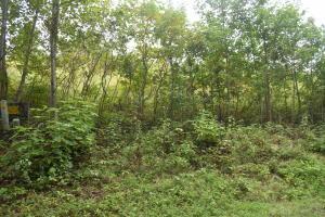 Emerald Glen, Caryville, TN 37714