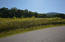 Lot 29 Sugar Tree Drive, Sevierville, TN 37876