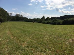 Lot 1 Alley Rd, Andersonville, TN 37705