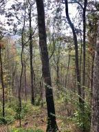 Lot 10 Vixen Run, Gatlinburg, TN 37738