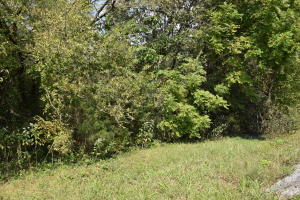 UNRESTRICTED 2.4 acres in Strawplains