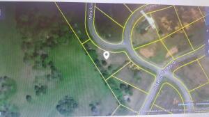 Meadow Lane, Harriman, TN 37748