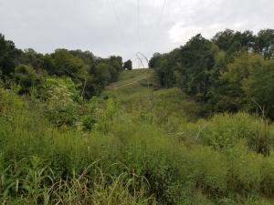 Academy Drive, Friendsville, TN 37737