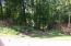 208 E Cove Drive, Greenback, TN 37742