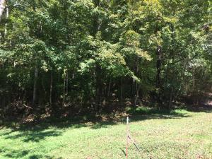 Wealdwood Drive, Clinton, TN 37716