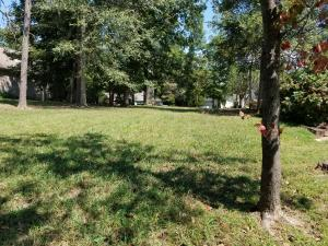 Best lot in neighborhood, flat and large an almost totally cleared