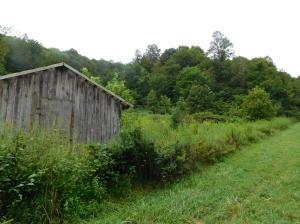 49.4 acres