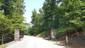 Indian Ridge Drive, Tellico Plains, TN 37385