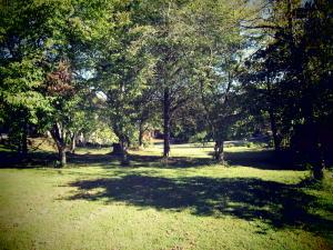 337 Gadusi Lane, Loudon, TN 37774
