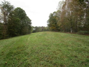 5100 Tater Valley Rd, Washburn, TN 37888