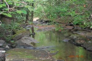 1_Basin Creek 1