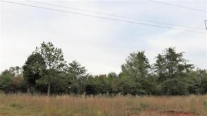 Lot 16 Ten Mile Lane, Ten Mile, TN 37880