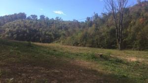 Hodgetown Rd, Rutledge, TN 37861